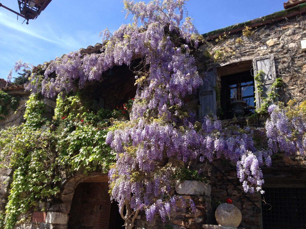 Castelnou-hus med blomster